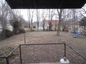 Back  yard in December