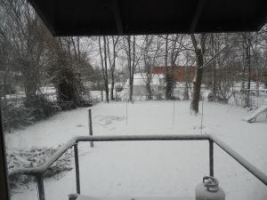 Back yard in February